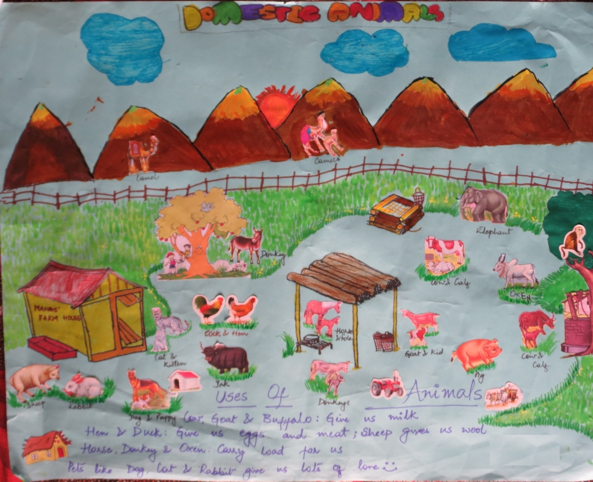 Domestic Animals School Project